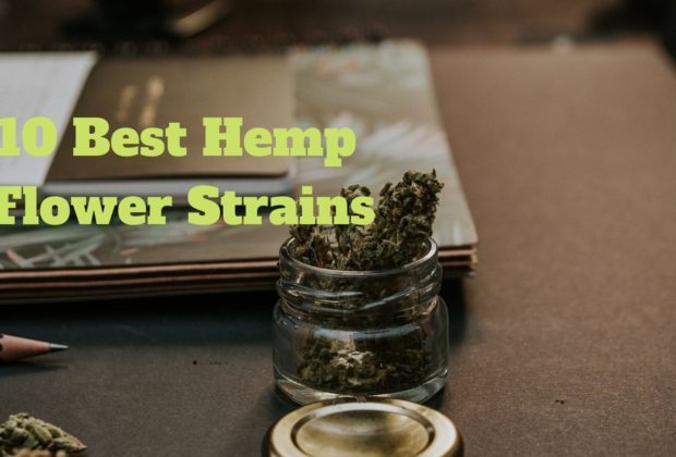 10-best-hemp-flower-strains